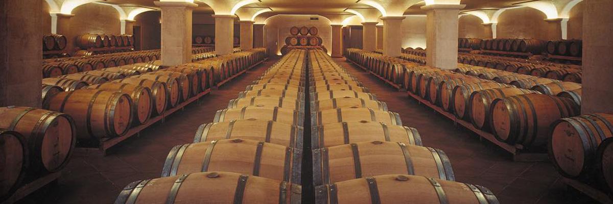 Tenuta San Leonardo wine wein