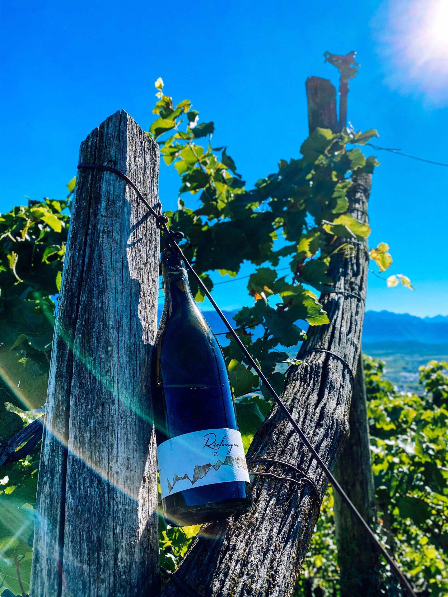 Vinum Hotel Ansitz Plantitscherhof Meran Südtirol Weinkaufsliste rielingerhof vernatsch