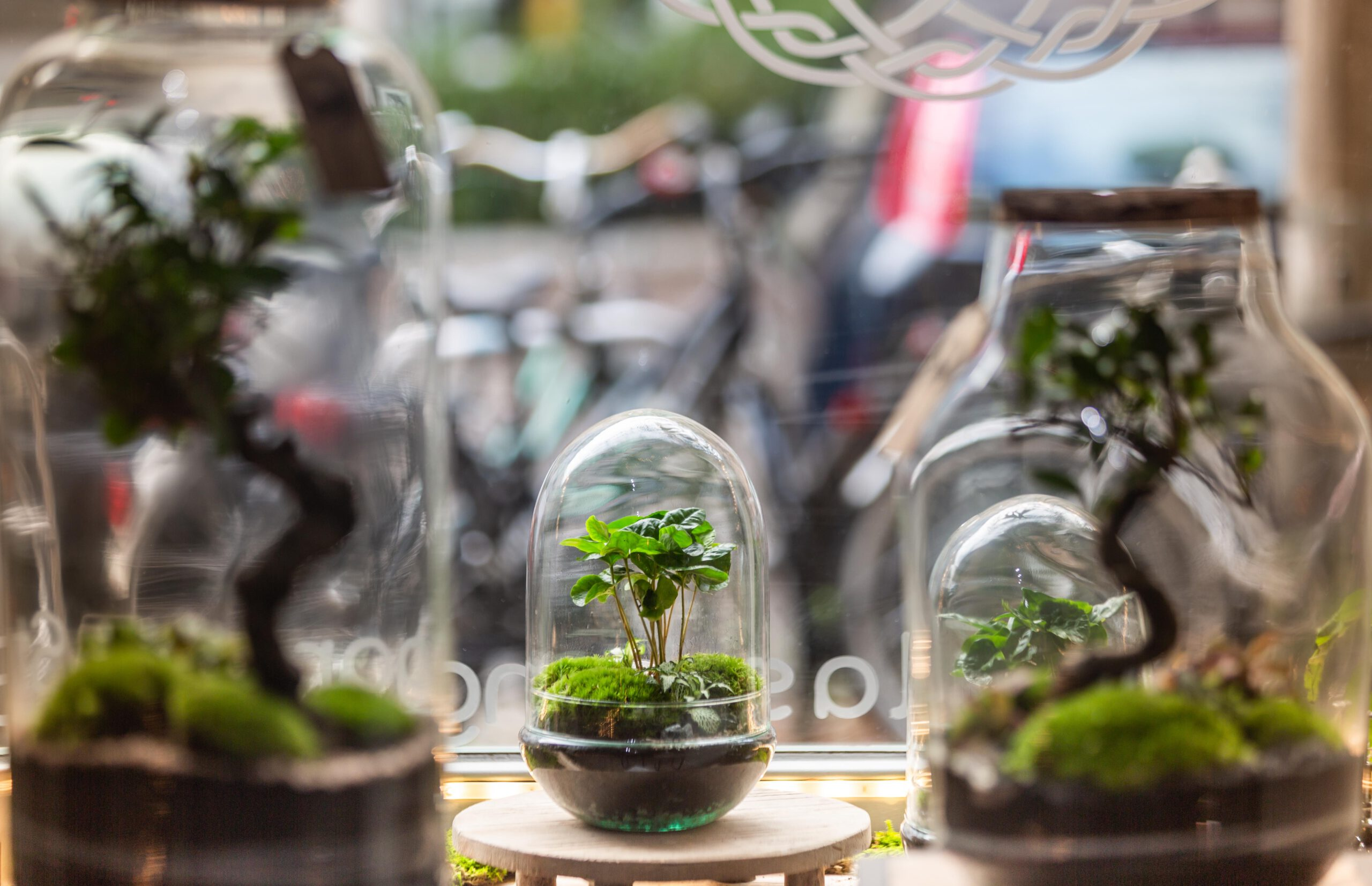 tiny gardens glas biotope living